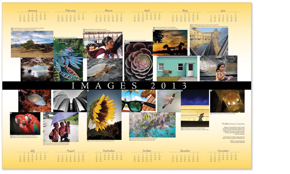Images 2013